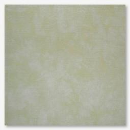 Тканина Picture This Plus Willow (верба)