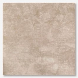 Тканина Picture This Plus Sand (піщаний)