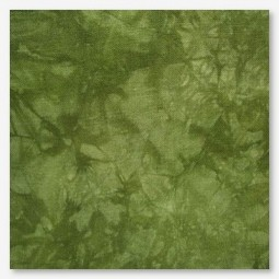 Тканина Picture This Plus Moss (мох)