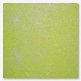 Ткань Picture This Plus Kermit (кермит)