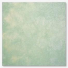 Тканина Picture This Plus Jade (нефрит)