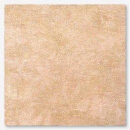 Ткань Picture This Plus Earthen (глиняный)