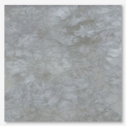 Тканина Picture This Plus Dapple (плямистий)