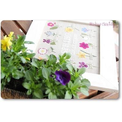 Spring Collection Madame Chantilly