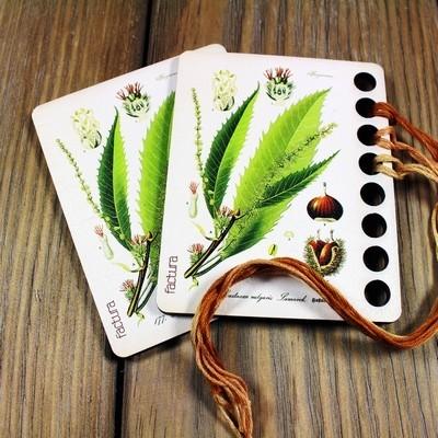 Органайзер для мулине Botanicum. Castanea (каштан)