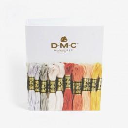 Папка-скоросшиватель для хранения мулине DMC GC003