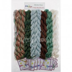 Комплект нитей Dinky Dyes Fudgy Mint Mousse Glendon Place