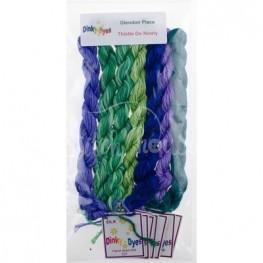 Комплект нитей Dinky Dyes Thistle Do Nicely