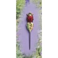 CGP03 Ladybug