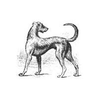 Long Dog Samplers